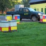 Včelařská farma-oddělky